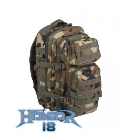 Backpack US Assault 20L Woodland