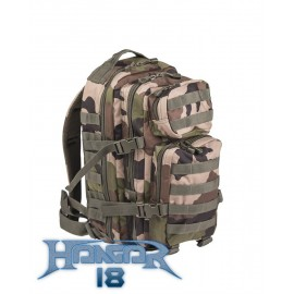 Backpack US Assault 20L CCE Camo